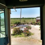 Bookmobile view from door at Shwanda's Greenhouse